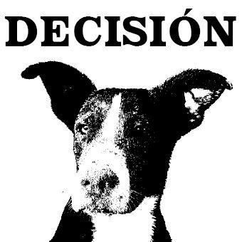 portada-decision